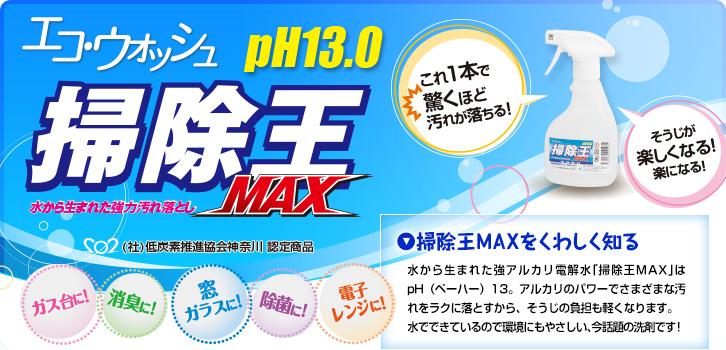 水洗剤掃除王MAX くわしく知る